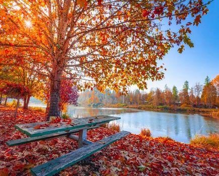 Jesienny wypad na weekend - gdzie warto pojechać