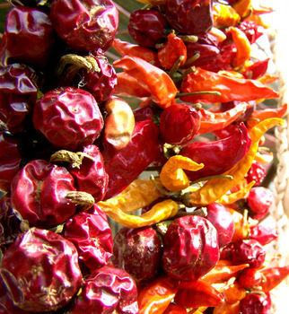 Suszone warzywa i owoce - jak przygotować susz?