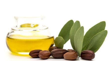 Dlaczego warto stosowac olej jojoba?