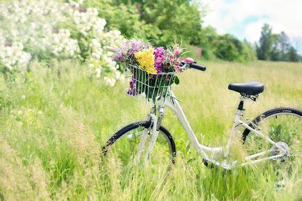 Jak wybrać stylowy rower dla kobiety?