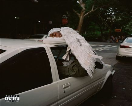 Blood Orange – Negro Swan