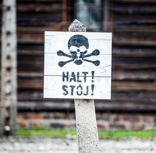 Wycieczki do Auschwitz-Birkenau