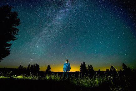 O chłopcu, zwierzętach, gwiazdkach i świetle