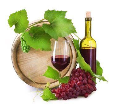 Produkcja wina – testy