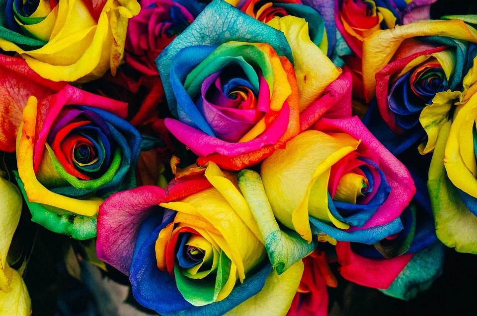 Hurtownia florystyczna online - zamów kwiaty już dzisiaj i ciesz się przyjemną atmosferą