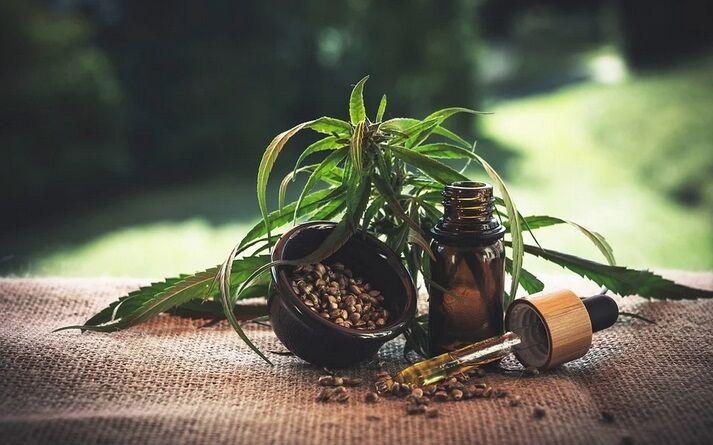 Medyczna marihuana a susz CBD