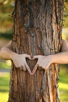 Jak przyjąć pozytywną energię drzew...