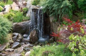 Projekt pięknego ogrodu
