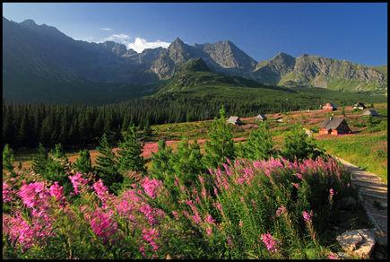 Wiosna w Tatrach jest najpiękniejsza