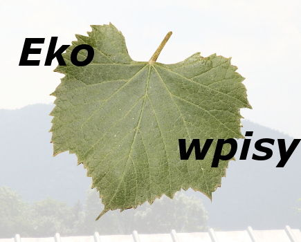Rola ekologii we współczesnym świecie