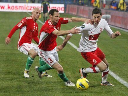 Irlandia - Polska. Zapowiedź.