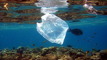 Oksy-biodegradacja – a co to znaczy?