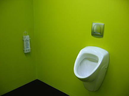 Pisuary w domowych łazienkach?