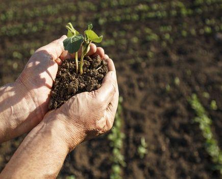Wybierz kredyt rolniczy idealnie dopasowany do swoich potrzeb!