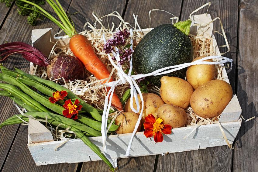 Jak prawidłowo przewozić owoce i warzywa?