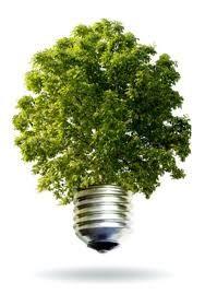 Własne źródło energii z odpadów – jak być efektywnym ECO-logicznie i ekonomicznie?
