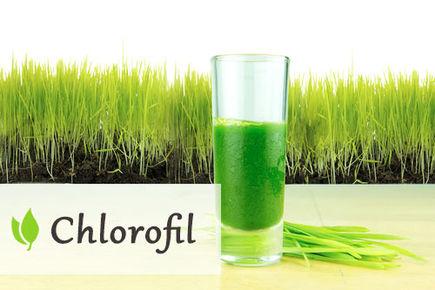 Chlorofil - zielone źródło energii