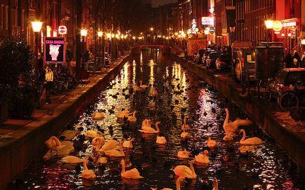 Autobusem na weekend - Amsterdam