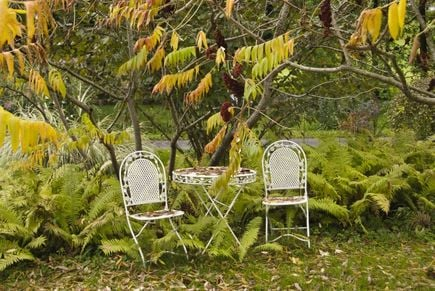 Zalety siatki ogrodzeniowej