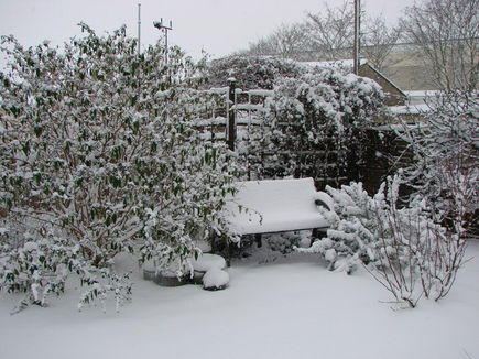 Zimowe zabezpieczenie ogrodu