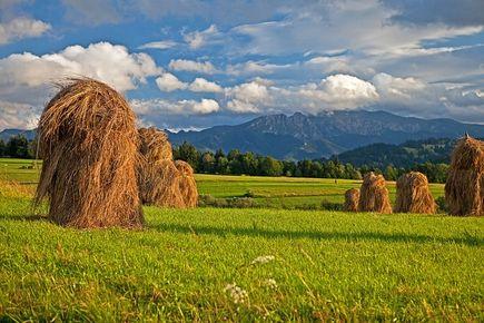 Wypoczynek w Tatrach