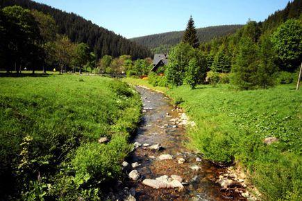 Bieszczady na Dolnym Śląsku, a więc wędrówka po Górach Bialskich