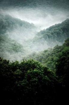 Atrakcje Gór Sowich