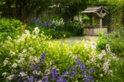 Wykorzystanie kamienia w ogrodzie