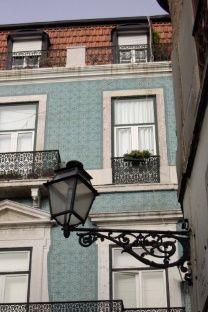 Jakie rośliny posadzić na balkonie i tarasie?