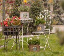 Jak urządzić ogród w stylu prowansalskim?