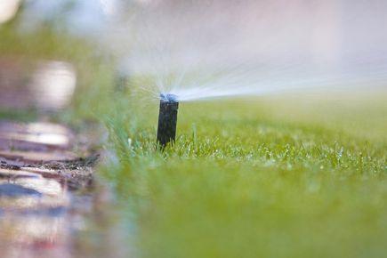Jak nawadniać trawnik w ogrodzie?