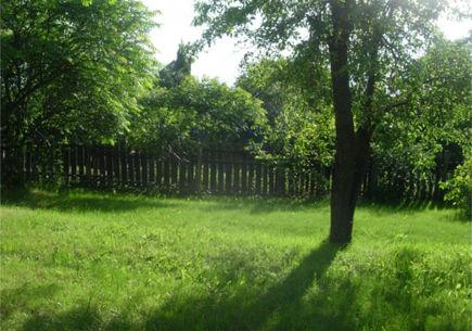 Ogród naturalny i wiejski – jak go urządzić?