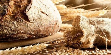 Pieczywo białe zabija - Chleb, czyli czego uczą nas wołki zbożowe