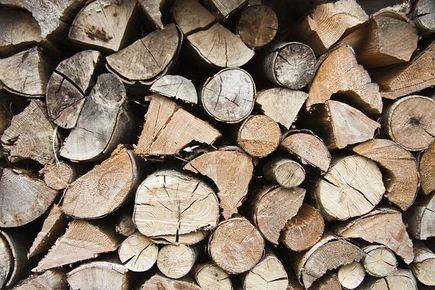 Jakim drewnem palić w kominku?