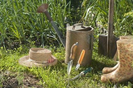 Niezbędnik ogrodnika