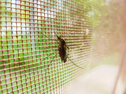 Idzie lato. Czas zainstalować moskitiery