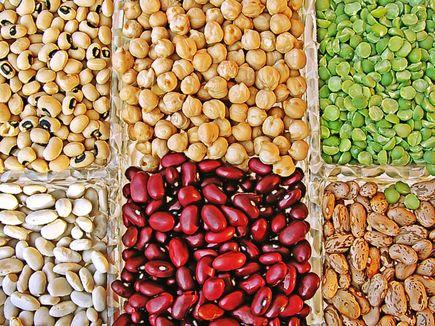 Strączki - białko z roślin