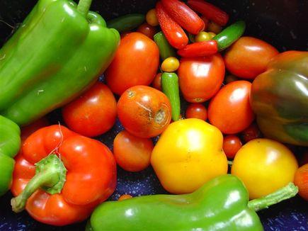 Dieta kapuściana - podstawowe informacje