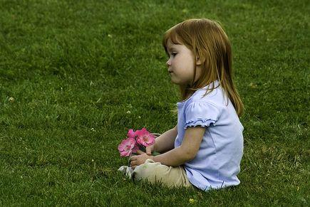 Trawa z rolki – szybki sposób na piękny trawnik