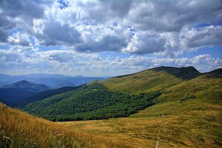 Dzikie i piękne Bieszczady