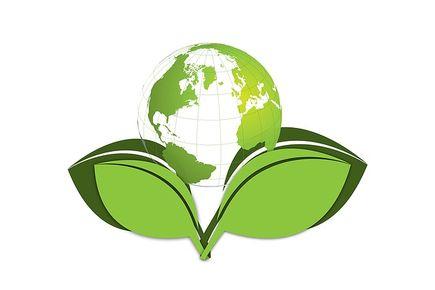 Eko moda w służbie środowisku