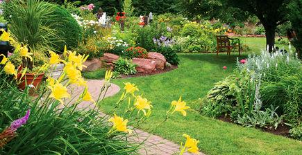 Dekorowanie ogrodu - rośliny ozdobne do ogrodu