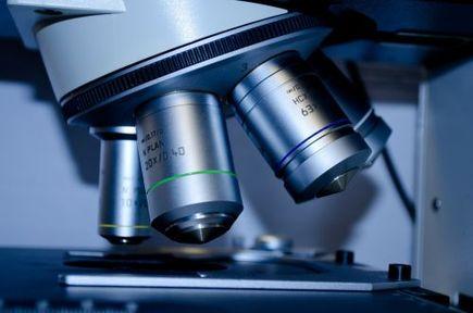 Na czym polegają przedimplantacyjne genetyczne badania przesiewowe