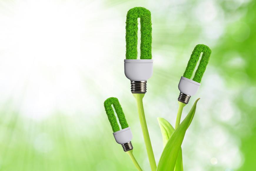 Odnawialne źródła energii - jakie możliwości daje rynek?