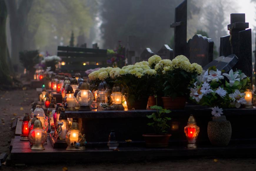 Kwiaty wieczne na wieczną pamięć, zadbaj o groby bliskich.