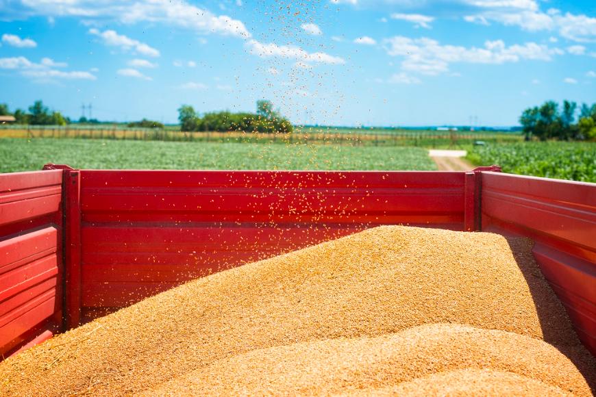 Dla rolnika: cechy nowoczesnych przyczep samozbierających