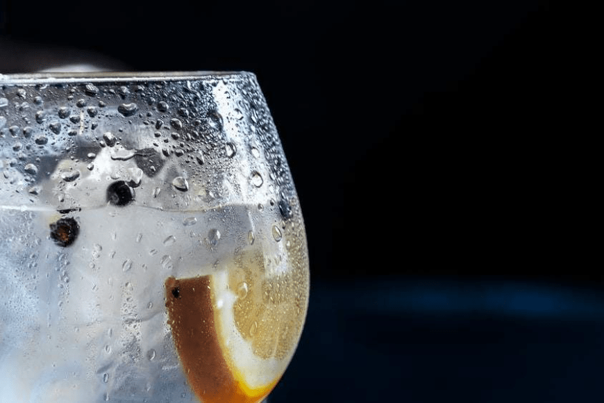 Popularne drinki z ginem – sprawdź nasze propozycje!