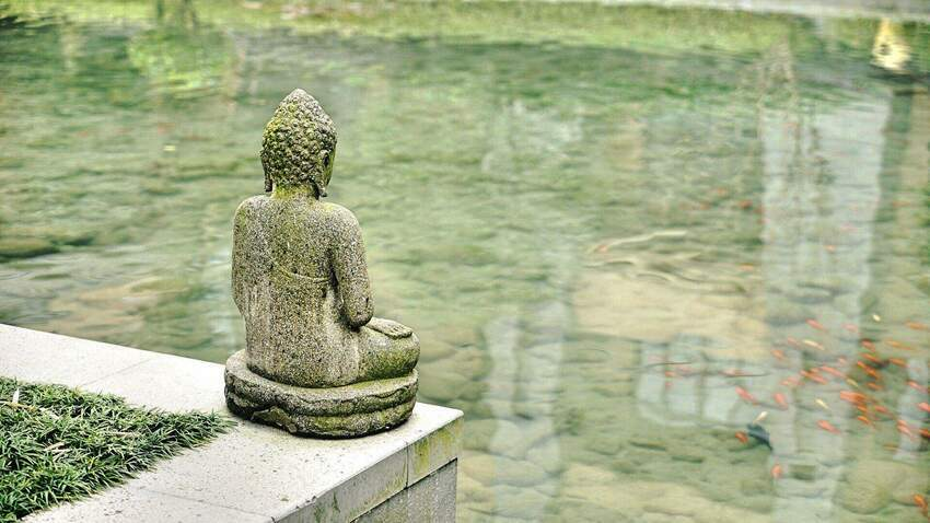 Pięć Przemian - Dietetyka wg Tradycyjnej Medycyny Chińskiej